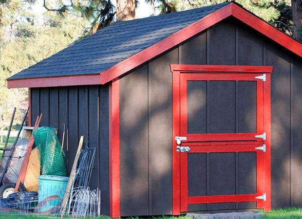How to Bug & Pest Proof Your Shed