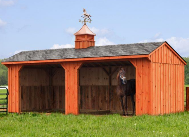 Designing a Horse Barn that Suits Your Needs
