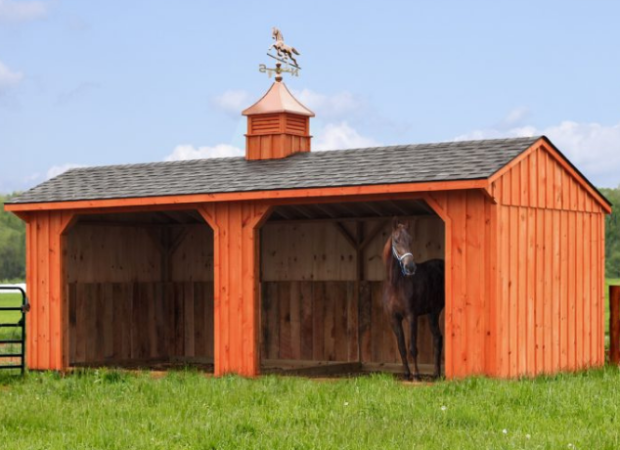 Best Horse Barns on a Budget: See Pictures & Must-Haves