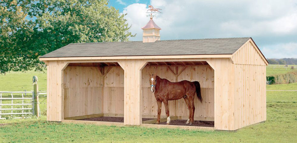 horse structures